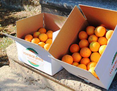 Caja naranjas